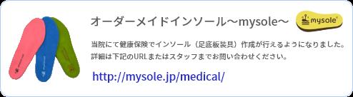 オーダーメイドインソール~mysole~